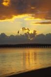 australasia;Australia;australian;bird;birds;coast;coastal;coastline;color;colors;colour;colours;dawn;fly;flying;Fraser-Coast;Hervey-Bay;jetties;jetty;orange;pier;piers;queensland;ray;rays;silhouette;silhouettes;sun-rays;sunrays;sunrise;Urangan-pier;wharf;wharfs;wharves