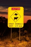 Australasian;Australia;Australian;cow;cows;Gibb-River-Highway;Gibb-River-Rd;Gibb-River-Rd-sign;Gibb-River-Road;Gibb-River-Road-sign;information-sign;information-signs;kangaroo;kangaroos;Kimberley;Kimberley-Region;next-670km;road-sign;road-signs;sign;signs;The-Kimberley;W.A.;WA;warning-sign;warning-signs;West-Australia;Western-Australia