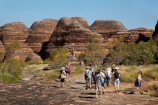arid;Australasia;Australasian;Australia;Australian;Australian-Outback;back-country;backcountry;backwoods;beehives;Bungle-Bungle;Bungle-Bungle-Range;Bungle-Bungles;Cathedral-Gorge;country;countryside;female;geographic;geography;geological;geology;hiking-track;hiking-tracks;Kimberley;Kimberley-Region;male;man;men;Outback;people;person;Purnululu-N.P.;Purnululu-National-Park;Purnululu-NP;remote;remoteness;rock;rock-formation;rock-formations;rock-outcrop;rock-outcrops;rocks;rural;The-Kimberley;tourism;tourist;tourists;track;tracks;UN-world-heritage-area;UN-world-heritage-site;UNESCO-World-Heritage-area;UNESCO-World-Heritage-Site;united-nations-world-heritage-area;united-nations-world-heritage-site;W.A.;WA;walking-track;walking-tracks;West-Australia;Western-Australia;wilderness;woman;women;world-heritage;world-heritage-area;world-heritage-areas;World-Heritage-Park;World-Heritage-site;World-Heritage-Sites