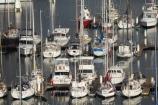 Australasian;Australia;Australian;boat;boats;calm;calmness;coast;coastal;coastline;coastlines;coasts;Coffs-Harbor;Coffs-Harbour;Coffs-Harbor;Coffs-Harbour;Coffs-Harbour-Marina;fishing-boats;harbor;harbors;harbour;harbours;hull;hulls;launch;launches;marina;marinas;mast;masts;Mid-North-Coast;Mid-North-Coast-NSW;Mid-North-Nsw;Mid-Northern-NSW;N.S.W.;New-South-Wales;NSW;ocean;oceans;peaceful;peacefulness;port;ports;sail;sailing;sea;shore;shoreline;shorelines;shores;still;stillness;tranquil;tranquility;yacht;yachts