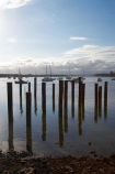 Australasian;Australia;Australian;boat;boats;Hastings-River;Mid-North-Coast;Mid-North-Coast-NSW;Mid-North-Nsw;Mid-Northern-NSW;N.S.W.;New-South-Wales;NSW;piers;pile;piles;Port-Macquarie;yacht;yachts