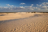 arid;Australasia;Australia;Australian;Australian-Desert;Australian-Deserts;Australian-Outback;back-country;backcountry;backwoods;country;countryside;desert;deserts;dry;dune;dunes;geographic;geography;lizard-print;lizard-prints;lizard-track;lizard-tracks;Mungo-N.P.;Mungo-National-Park;Mungo-NP;N.S.W.;New-South-Wales;NSW;outback;prints;red-centre;remote;remoteness;ripple;ripples;rural;sand;sand-dune;sand-dunes;sand-hill;sand-hills;sand-ripple;sand-ripples;sand_dune;sand_dunes;sand_hill;sand_hills;sanddune;sanddunes;sandhill;sandhills;sandy;wilderness;wind-ripple;wind-ripples