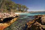 A.C.T.;ACT;Australasia;Australia;Australian-Capital-Territory;beach;beaches;Booderee-N.P.;Booderee-National-Park;Booderee-NP;Bristol-Point;coast;coastal;coastline;coastlines;coasts;eucalypt;eucalypts;eucalyptus;eucalytis;foreshore;Green-Patch-Beach;Greenpatch-Beach;gum;gum-tree;gum-trees;gums;Jervis-Bay;Jervis-Bay-Territory;N.S.W.;New-South-Wales;NSW;ocean;oceans;sand;sandy;sea;seas;shore;shoreline;shorelines;shores;South-New-South-Wales;Southern-New-South-Wales;tree;trees;water