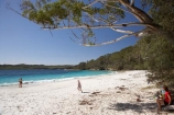 A.C.T.;ACT;aqua;aquamarine;Australasia;Australia;Australian-Capital-Territory;beach;beaches;blue;Booderee-N.P.;Booderee-National-Park;Booderee-NP;coast;coastal;coastline;cobalt-blue;eucalypt;eucalypts;eucalyptus;eucalytis;gum;gum-tree;gum-trees;gums;Jervis-Bay;Jervis-Bay-Territory;Murrays-Beach;Murrays-Beach;N.S.W.;New-South-Wales;NSW;ocean;oceans;people;person;sand;sandy;sea;seas;shore;shoreline;South-New-South-Wales;Southern-New-South-Wales;tree;trees;turquoise