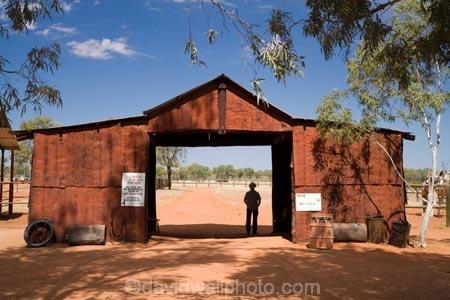 Outback Camel Farm, Stuart Highway, Outback, Northern ...