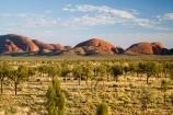 Anugu;arid;Australasia;Australia;Australian;Australian-Desert;Australian-Deserts;back-country;backcountry;Desert;Deserts;Kata-Tjuta;N.T.;National-Park;National-Parks;Northern-Territory;NT;Outback;red-centre;The-Outback;Uluru-_-Kata-Tjuta-National-Park;Uluru-_-Kata-Tjuta-World-Heritage-Area;UNESCO;Unesco-world-heritage-area;World-Heritage-Area;World-Heritage-Areas