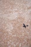 15-m-below-sea-level;aerial;aerial-photo;aerial-photography;aerial-photos;aerial-view;aerial-views;aerials;Aeroplane;Aeroplanes;Aircraft;Aircrafts;Airplane;Airplanes;alkalii-flat;Australasian;Australia;Australian;Australian-Desert;Australian-Deserts;Australian-Outback;aviation;back-country;backcountry;backwoods;barren;barreness;basin;below-sea-level;Belt-Bay;bright;bright-white;cessna;cessnas;dazzle;dazzling;depression;desert;deserts;desolate;dry;dry-lake;dry-lakes;empty;endorheric;endorheric-basin;endorheric-basins;endorheric-lake;extreme;flat;Flight;Flights;Fly;Flying;geographic;geography;glare;glary;hostile;huge;lake;lake-bed;lake-beds;Lake-Eyre-N.P.;Lake-Eyre-National-Park;Lake-Eyre-NP;lakes;national-park;national-parks;Oodnadatta-Track;Outback;pan;pans;plane;plane-shadow;Planes;playa;playas;remote;remoteness;S.A.;SA;sabkha;saline;salt;salt-crust;salt-lake;salt-lakes;salt-pan;salt-pans;salt-pattern;salt-patterns;salt_pan;salt_pans;saltpan;saltpans;salty;scale;shadow;shadows;South-Australia;surface-pattern;surface-patterns;vast;white;white-surface;wilderness;worlds-largest-salt-lake