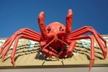 Australasian;Australia;Australian;big-cray;big-crayfish;big-crayfishes;big-crays;big-lobster;big-lobsters;giant;giant-cray;giant-crayfish;giant-crayfishes;giant-crays;giant-lobster;giant-lobsters;huge;icon;icons;Island-of-Tasmania;North-Western-Tasmania;North-WestTasmania;Northern-Tasmania;Northwestern-Tasmania;NorthwestTasmania;sign;signs;Stanley;Stanley-Peninsula;State-of-Tasmania;Tas;Tasmania;The-North