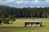agricultural;agriculture;Australasian;Australia;Australian;country;countryside;farm;Farm-Building;Farm-Buildings;Farm-Shed;Farm-Sheds;farming;farmland;farms;field;fields;hay-bale;hay-bales;Hay-Barn;Hay-Barns;Hay-Sheds;hay-stack;hay-stacls;hay_bale;hay_bales;hay_stack;hay_stacls;haybarn;haybarns;hayshed;haysheds;haystack;haystacls;Island-of-Tasmania;Marrawah;meadow;meadows;Northern-Tasmania;paddock;paddocks;pasture;pastures;rural;Shearing-Sheds;State-of-Tasmania;stock-feed;Tas;Tasmania;The-North;winter-feed