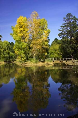 australasia;Australia;australian;autumn;autumn-colour;autumn-colours;autumnal;autumninal;brook;brooks;calder-highway;calm;color;colors;colour;colours;creek;creeks;deciduous;fall;fall-color;fall-colors;flow;foliage;golden;lake;lakes;leaf;leaves;Malmsbury;pond;ponds;pool;reflection;reflections;river;rivers;still;stream;streams;tree;trees;Victoria;water;wet;yellow