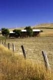 aerogenerator;aerogenerators;agricultural;agriculture;australasia;australia;australian;barn;barns;country;countryside;dynamo;farm;farm-building;farm-buildings;farming;farmland;farms;fence;fence-post;fence-posts;fencepost;fenceposts;fences;field;fields;generation;generators;hay-barn;hay-shed;hay-sheds;haybarn;haybarns;hayshed;haysheds;meadow;meadows;paddock;paddocks;pasture;pastures;power-generation;power-generator;power-generators;rural;sustainable-energy;sustainable-generation;victoria;wind-energy;wind-farm;wind-farms;wind-generation;wind-generator;wind-generators;wind-turbine;wind-turbines;windmill;windmills