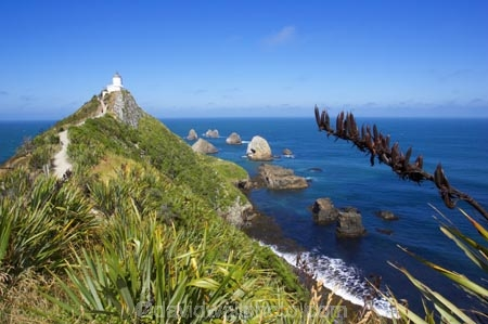 bluff;bluffs;Catlins-District;cliff;cliffs;clutha-district;coast;coastal;coastline;flax;horizon;light-house;light-houses;lighthouse;lighthouses;New-Zealand;Nugget-Point;ocean;pacific;people;rock;rocks;sea;South-Island;south-otago;tourism;tourist;tourists;track;walkers;wave;waves