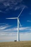 alternative-energies;alternative-energy;electrical;electricity;electricity-generation;electricity-generators;energy;environment;environmental;generation;generator;generators;industrial;industry;N.Z.;New-Zealand;power-generation;power-generators;propeller;propellers;renewable-energies;renewable-energy;renewable-generation;renewable-power;S.I.;SI;South-Is;South-Island;South-Otago;spin;spining;Sth-Is;sustainable-energies;sustainable-energy;turbine-blade;turbine-blades;Waitahuna;wind;wind-blade;wind-blades;wind-farm;wind-farms;wind-generator;wind-generators;wind-power;wind-power-plant;wind-power-plants;wind-turbine;wind-turbine-blade;wind-turbine-blades;wind-turbines;wind_farm;wind_farms;windfarm;windfarms;windmill;windmills;windturbine;windturbines;windy