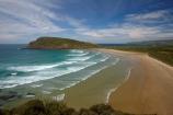 beach;beaches;Cannibal-Bay;Catlins-District;coast;coastal;coastline;coastlines;coasts;N.Z.;New-Zealand;NZ;ocean;oceans;Otago;S.I.;sand;sandy;sea;seas;shore;shoreline;shorelines;shores;SI;South-Is;South-Is.;South-Island;South-Otago;Sth-Is;surf;water;wave;waves