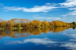 autuminal;autumn;Autumn-colour;autumn-colours;autumnal;Balclutha;blue;calm;Clutha-District;Clutha-River;Clutha-River-north-branch;color;colors;colour;colours;deciduous;fall;gold;golden;Inch-Clutha;Kaitangata;leaf;leaves;Mata_Au;Matau;N.Z.;New-Zealand;Northern-Branch-Clutha-River;NZ;Otago;placid;quiet;reflected;reflection;reflections;river;rivers;S.I.;season;seasonal;seasons;serene;SI;smooth;South-Is;South-Island;South-Otago;Sth-Is;still;tranquil;tree;trees;water;willow;willow-tree;willows;yellow