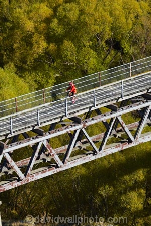 autuminal;autumn;autumn-colour;autumn-colours;autumnal;bicycle;bicycles;bike;bike-track;bike-tracks;bike-trail;bike-trails;bikes;bridge;bridges;Central-Otago;Central-Otago-Cycle-Trail;Central-Otago-Rail-Trail;color;colors;colour;colours;cycle;cycle-track;cycle-tracks;cycle-trail;cycle-trails;cycler;cyclers;cycles;cycleway;cycleways;cyclist;cyclists;deciduous;excercise;excercising;fall;gold;golden;heritage;historic;historic-bridge;historic-bridges;historic-place;historic-places;historical;historical-place;historical-places;history;leaf;leaves;model-released;mountain-bike;mountain-biker;mountain-bikers;mountain-bikes;MR;mtn-bike;mtn-biker;mtn-bikers;mtn-bikes;N.Z.;New-Zealand;NZ;old;Otago;Otago-Central-Cycle-Trail;Otago-Central-Rail-Trail;Otago-Rail-Trail;people;person;Poolburn-Gorge;Poolburn-Viaduct;push-bike;push-bikes;push_bike;push_bikes;pushbike;pushbikes;rail-bridge;rail-trail;rail-trails;S.I.;season;seasonal;seasons;SI;South-Is;South-Island;Sth-Is;tradition;traditional;tree;trees;yellow