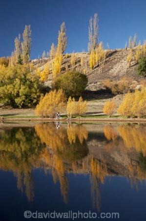 autuminal;autumn;autumn-colour;autumn-colours;autumnal;Bannockburn;Bannockburn-Inlet;bicycle;bicycles;bike;bikes;boy;boys;calm;Central-Otago;child;children;color;colors;colour;colours;cycle;cycler;cyclers;cycles;cyclist;cyclists;deciduous;fall;female;golden;Kawarau-Arm;kid;kids;lake;Lake-Dunstan;lakes;little-boy;little-boys;model-release;model-released;mother;mother-and-son;mothers;mountain-bike;mountain-biker;mountain-bikers;mountain-bikes;mtn-bike;mtn-biker;mtn-bikers;mtn-bikes;N.Z.;New-Zealand;NZ;Otago;outdoor;outdoors;people;person;placid;poplar;poplar-tree;poplar-trees;poplars;push-bike;push-bikes;push_bike;push_bikes;pushbike;pushbikes;quiet;recreation;reflection;reflections;S.I.;season;seasonal;seasons;serene;SI;smooth;son;sons;South-Is.;South-Island;still;tranquil;tree;trees;water;willow;willow-tree;willow-trees;willows;woman;yellow