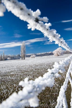 8-wire;agricultural;agriculture;barbed-wire;barbed-wire-fence;barbed-wire-fences;beautiful;calm;calmness;Central-Otago;clean;clear;cold;Coldness;Color;Colour;country;countryside;Daytime;Exterior;farm;farming;farmland;farms;fence;fence-line;fence-lines;fence_line;fence_lines;fenceline;fencelines;fences;field;fields;freeze;freezing;freezing-fog;frost;Frosted;frosty;frosty-wire;frosty-wires;high-country;hoar-frost;hoar-frosts;Hoarfrost;hoarfrosts;ice;ice-crystals;icy;Ida-Valley;idyllic;Landscape;Landscapes;Maniototo;meadow;meadows;N.Z.;natural;Nature;new-zealand;number-8-wire;number-eight-wire;NZ;Otago;Outdoor;Outdoors;Outside;paddock;paddocks;pasture;pastures;peaceful;Peacefulness;phenomena;phenomenon;Poolburn;poplar;poplar-tree;poplar-trees;poplars;pure;Quiet;Quietness;rime;rime-ice;rural;S.I.;Scenic;Scenics;Season;Seasons;SI;silence;south-island;spectacular;stunning;tranquil;tranquility;tree;trees;view;water;weather;White;willow;willow-tree;willow-trees;willows;winter;Wintertime;wintery;wintry;wire;wires