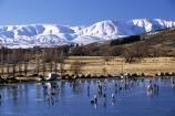 cold;freeze;freezing;winter;ice;bonspiel;stone;stones;sport;sports;smooth;lake;lakes;dams;hawkdun-range;hill;hills;mountains;mountain;ranges;snow;central-otago-rail-trail;icy
