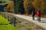 autuminal;autumn;autumn-colour;autumn-colours;autumnal;bicycle;bicycles;bike;bike-track;bike-tracks;bike-trail;bike-trails;bikes;Central-Otago;Clutha-Gold-Bike-Trail;Clutha-Gold-Cycle-Trail;Clutha-Gold-Track;Clutha-Gold-Trail;color;colors;colour;colours;cycle;cycle-track;cycle-tracks;cycle-trail;cycle-trails;cycler;cyclers;cycles;cycleway;cycleways;cyclist;cyclists;deciduous;excercise;excercising;fall;gold;golden;Lawrence;leaf;leaves;model-released;mountain-bike;mountain-biker;mountain-bikers;mountain-bikes;MR;mtn-bike;mtn-biker;mtn-bikers;mtn-bikes;N.Z.;New-Zealand;NZ;Otago;people;person;push-bike;push-bikes;push_bike;push_bikes;pushbike;pushbikes;S.I.;season;seasonal;seasons;SI;South-Is;South-Island;Sth-Is;tree;trees;yellow