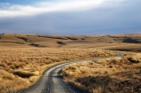 back-country;backcountry;Central-Otago;country;countryside;farm;farming;farmland;farms;field;fields;gravel-road;gravel-roads;high-country;highcountry;highland;highlands;Lammermoor-Range;Lammermoor-Ranges;metal-road;metal-roads;metalled-road;metalled-roads;N.Z.;New-Zealand;NZ;Old-Dunstan-Road;Old-Dunstan-Track;Old-Dunstan-Trail;Otago;road;roads;rural;S.I.;SI;South-Island