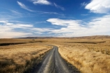 back-country;backcountry;Central-Otago;country;countryside;farm;farming;farmland;farms;field;fields;gravel-road;gravel-roads;high-country;highcountry;highland;highlands;Lammermoor-Range;Lammermoor-Ranges;metal-road;metal-roads;metalled-road;metalled-roads;N.Z.;New-Zealand;NZ;Old-Dunstan-Road;Old-Dunstan-Track;Old-Dunstan-Trail;Otago;road;roads;Rock-and-Pillar-Range;Rock-and-Pillar-Ranges;rural;S.I.;SI;South-Island