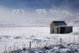 abandon;abandoned;agricultural;agriculture;beautiful;calm;calmness;castaway;Central-Otago;character;clean;clear;cold;Coldness;Color;Colour;corrugated-iron;corrugated-metal;corrugated-steel;country;countryside;Daytime;derelict;dereliction;deserted;desolate;desolation;destruction;Exterior;extreme-weather;farm;Farm-Building;Farm-Buildings;Farm-Shed;Farm-Sheds;farming;farmland;farms;fence;fence-line;fence-lines;fence_line;fence_lines;fenceline;fencelines;fences;field;fields;freeze;freezing;freezing-fog;frost;Frosted;frosts;frosty;high-country;hoar-frost;hoar-frosts;Hoarfrost;hoarfrosts;ice;ice-crystals;icy;Ida-Range;Ida-Valley;Idaburn;idyllic;Landscape;Landscapes;Maniototo;meadow;meadows;Mount-Ida;Mt-Ida;Mt.-Ida;N.Z.;natural;Nature;neglect;neglected;new-zealand;NZ;old;old-shed;old-sheds;Otago;Outdoor;Outdoors;Outside;paddock;paddocks;pasture;pastures;peaceful;Peacefulness;phenomena;phenomenon;pure;Quiet;Quietness;rime;rime-ice;ruin;ruins;run-down;rural;rustic;S.I.;Scenic;Scenics;Season;Seasons;shed;sheds;SI;silence;South-Is.;South-Island;spectacular;stunning;tranquil;tranquility;view;vintage;water;weather;White;winter;Wintertime;wintery;wintry