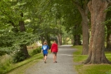 Canterbury;children;Christchurch;foot-path;foot-paths;footpath;footpaths;forest;forests;Hagley-Park;Hagley-Park-North;N.Z.;New-Zealand;North-Hagley-Park;NZ;people;person;S.I.;SI;South-Is;South-Island;track;tracks;tree;trees;walker;walkers;walking;walking-path;walking-track