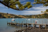 Akaroa;Akaroa-Harbor;Akaroa-Harbour;Banks-Peninsula;boat;boats;Canterbury;cruise;cruises;dock;docks;jetties;jetty;launch;launches;N.Z.;New-Zealand;NZ;pier;piers;quay;quays;S.I.;SI;South-Is;South-Island;waterside;wharf;wharfes;wharves;yacht;yachts