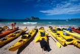aqua;beach;beached;beaches;blue;bush;coast;coast-line;coastal;coastline;color;colors;colour;colours;green;island;islands;kayaking;kayaks;paddle;paddles;paddling;park;parked;peace;peaceful;peacefulness;sand;sea;shore;shore-line;shoreline;tranquil;tranquility;water;yellow