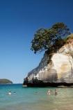 beach;beaches;Cathedral-Cove;Cathedral-Cove-recreation-reserve;coast;coastal;coastline;coastlines;coasts;Coromandel;Coromandel-Peninsula;foreshore;Hahei;marine-reserve;marine-reserves;Mercury-Bay;N.I.;N.Z.;New-Zealand;NI;North-Is;North-Is.;North-Island;NZ;ocean;oceans;sand;sandy;sea;seas;shore;shoreline;shorelines;shores;swim;swimmer;swimmers;swimming;Te-Whanganui-A-Hei-Marine-Reserve;Te-Whanganui_A_Hei-Marine-Reserve;Waikato;water