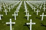 cross;crosses;Dunedin;Field-of-Rememberance;memorial;memorial-crosses;memorials;military-crosses;military-memorial;N.Z.;New-Zealand;NZ;Otago;pattern;patterns;Queens-Gardens;Queens-Gardens;row;rows;rows-of-crosses;soldiers-memorial-crosses;soldiers-memorials;South-Is;South-Island;Sth-Is;WWI-memorial