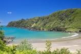 bay;bays;beach;beaches;coast;coastal;coastline;east-cape;east-coast;Eastland;hicks-bay;Hicks-Bay;new-zealand;north-is.;north-island;ocean;oceans;Onepoto-Bay;sand;sandy;sea;shore;shoreline;surf;wave;waves