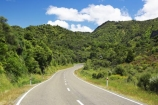 beautiful;beauty;bend;bends;bush;centre-line;centre-lines;centre_line;centre_lines;centreline;centrelines;corner;corners;driving;east-cape;east-coast;Eastland;endemic;forest;forests;green;Hicks-Bay;highway;highways;native;native-bush;natives;natural;nature;New-Zealand;north-is.;north-island;open-road;open-roads;road;road-trip;roads;scene;scenic;straight;transport;trasnportation;travel;traveling;travelling;tree;trees;trip;wood;woods