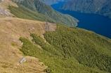 aerial;aerial-photo;aerial-photography;aerial-photos;aerial-view;aerial-views;aerials;air-to-air;altitude;beautiful;beauty;Beech-Forest;bush;bush-line;bush-lines;bush_line;bush_lines;bushline;bushlines;endemic;Fiordland;Fiordland-N.P;Fiordland-National-Park;Fiordland-NP;forest;forests;Great-Walk;green;hike;hiking;hiking-hut;hiking-huts;hiking-track;hiking-tracks;Kepler-Track;lake;Lake-Te-Anau;lakes;Luxmore-Hut;Mount-Luxmore;Mount-Luxmore-Hut;mountain-hut;mountain-huts;Mt-Luxmore;Mt-Luxmore-Hut;Mt.-Luxmore;Mt.-Luxmore-Hut;N.Z.;national-park;national-parks;native;native-bush;natives;natural;nature;New-Zealand;Nothofagus;NZ;rain-forest;rain-forests;rain_forest;rain_forests;rainforest;rainforests;S.I.;scene;scenic;SI;snow-line;snow-lines;snow_line;snow_lines;snowline;snowlines;South-Fiord;South-Island;south-west-new-zealand-world-heritage-area;southern-beeches;Southland;te-wahi-pounamu;te-wahipounamu;te-wahipounamu-south_west-new-zealand-world-heritage-area;timber;tramp;tramping;tramping-hut;tramping-huts;tramping-track;tramping-tracks;tree;tree-line;tree-lines;tree_line;tree_lines;treeline;treelines;trees;trek;treking;trekking;trekking-hut;trekking-huts;walk;walking;walking-track;walking-tracks;water;wood;woods;world-heirtage-site;world-heirtage-sites;world-heritage-area;world-heritage-areas