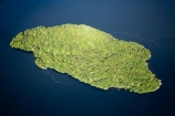 aerial;aerial-photo;aerial-photography;aerial-photos;aerial-view;aerial-views;aerials;air-to-air;beautiful;beauty;Beech-Forest;bush;coast;coastal;coastline;coastlines;coasts;Doubtful-Sound;endemic;Fergusson-Island;Fiord;Fiordland;Fiordland-N.P;Fiordland-National-Park;Fiordland-NP;Fiords;Fjord;Fjords;forest;forests;green;N.Z.;national-park;national-parks;native;native-bush;natives;natural;nature;New-Zealand;Nothofagus;NZ;ocean;rain-forest;rain-forests;rain_forest;rain_forests;rainforest;rainforests;S.I.;scene;scenic;sea;shore;shoreline;shorelines;shores;SI;Sound;Sounds;South-Island;south-west-new-zealand-world-heritage-area;southern-beeches;Southland;te-wahi-pounamu;te-wahipounamu;te-wahipounamu-south_west-new-zealand-world-heritage-area;timber;tree;trees;wood;woods;world-heirtage-site;world-heirtage-sites;world-heritage-area;world-heritage-areas