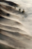 break-of-day;dawn;dawning;daybreak;first-light;fog;foggy;fogs;Hawkes-Bay;mist;mists;misty;morning;N.I.;N.Z.;New-Zealand;NI;North-Island;NZ;pattern;ridge;ridgeline;ridgelines;ridges;Te-Mata-Peak;view;views