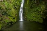 cascade;cascades;creek;creeks;falls;Kaikoura;Kaikoura-Coast;Marlborough;N.Z.;natural;nature;New-Zealand;NZ;Ohau-Point-Waterfall;Ohau-Waterfall;pool;pools;S.I.;scene;scenic;Seaward-Kaikoura-Range;Seaward-Kaikoura-Ranges;SI;South-Island;stream;streams;water;water-fall;water-falls;waterfall;waterfalls;wet