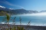 bay;bays;beach;beaches;cabbage-tree;cabbage-trees;coast;coastal;coastline;coastlines;coasts;cordolyne-australis;flax;flaxes;Kaikoura;Kaikoura-Coast;Mangamaunu;Marlborough;N.Z.;New-Zealand;NZ;ocean;oceans;Pacific-Ocean;S.I.;sea;seas;Seaward-Kaikoura-Ranges;shore;shoreline;shorelines;shores;SI;snow;snow-capped;South-Is;South-Island;Sth-Is;water