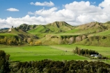 agricultural;agriculture;country;countryside;farm;farming;farmland;farms;field;fields;Mangaweka;meadow;meadows;N.I.;N.Z.;New-Zealand;NI;North-Island;NZ;paddock;paddocks;pasture;pastures;Rangitikei;rural