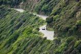 bend;bends;bush;corner;corners;curve;curves;driving;highway;highways;Kapiti-Coast;N.Z.;native-bush;New-Zealand;North-Is;North-Is.;North-Island;NZ;open-road;open-roads;Paekakariki;Paekakariki-Hill;Road;road-trip;roads;transport;transportation;travel;traveling;travelling;trip;Wind_blown-Bush