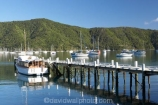 boat;boats;calm;calmness;fishing-boats;harbor;harbors;harbour;harbours;hull;hulls;jetties;jetty;launch;launches;marina;marinas;Marlborough;Marlborough-Sounds;mast;masts;moor;mooring;moorings;New-Zealand;peaceful;peacefulness;Picton;pier;piers;port;ports;Queen-Charlotte-Sound;reflection;reflections;sail;sailing;South-Island;still;stillness;tranquil;tranquility;Waikawa;Waikawa-Bay;waterside;wharf;wharfes;wharves;yacht;yachts