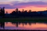 agricultural;agriculture;Canterbury;country;countryside;cow;cows;dam;dams;dusk;evening;farm;farming;farmland;farms;field;fields;irrigation-dam;livestock;meadow;meadows;N.Z.;New-Zealand;nightfall;NZ;orange;paddock;paddocks;pasture;pastures;pond;ponds;rural;S.I.;SI;sky;South-Canterbury;South-Is.;South-Island;sunset;sunsets;twilight;Waimate