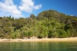 Abel-Tasman-Coast-Track;Abel-Tasman-Coastal-Track;Abel-Tasman-N.P.;Abel-Tasman-National-Park;Abel-Tasman-NP;beach;beaches;coast;coastal;coastline;golden-beach;golden-beaches;N.Z.;national-park;national-parks;Nelson-Region;New-Zealand;NZ;ocean;oceans;S.I.;sand;sandy;sea;seas;shore;shoreline;SI;South-Is.;South-Island