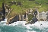 aerial;aerial-photo;aerial-photograph;aerial-photographs;aerial-photography;aerial-photos;aerial-view;aerial-views;aerials;agricultural;agriculture;bluff;bluffs;cliff;cliffs;coast;coastal;coastline;coastlines;coasts;country;countryside;farm;farming;farmland;farms;field;fields;geological;geology;meadow;meadows;N.Z.;Nelson-Region;New-Zealand;North-West-Coast;Northern-West-Coast;NZ;ocean;paddock;paddocks;pasture;pastures;Pilch-Point;rock-formation;rock-formations;rural;S.I.;sandstone;sea;shore;shoreline;shorelines;shores;SI;South-Is.;South-Island;steep;stone;surf;Tasman-Sea;water;waves;Wharariki-Beach