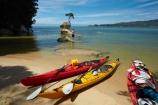 Abel-Tasman;Abel-Tasman-N.P.;Abel-Tasman-National-Park;Abel-Tasman-NP;adventure;adventure-tourism;boat;boats;canoe;canoeing;canoes;coast;coastal;coastline;coastlines;coasts;hot;kayak;kayaking;kayaks;N.Z.;national-park;national-parks;Nelson-Region;New-Zealand;NZ;ocean;oceans;red-kayak;red-kayaks;rock;S.I.;sea;sea-kayak;sea-kayaking;sea-kayaks;seas;shore;shoreline;shorelines;shores;South-Is;South-Island;Sth-Is;summer;swimmer;swimmers;Tasman-Bay;Tasman-District;teenager;teenagers;Tinline-Bay;tourism;tree;tree-on-rock;vacation;vacations;water;yellow-kayak;yellow-kayaks