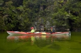 Abel-Tasman;Abel-Tasman-N.P.;Abel-Tasman-National-Park;Abel-Tasman-NP;adventure;adventure-tourism;boat;boats;bush;canoe;canoeing;canoes;estuaries;estuary;Falls-River;forest;green;inlet;inlets;kayak;kayaker;kayakers;kayaking;kayaks;lagoon;lagoons;M.R.;model-release;model-released;MR;N.Z.;national-park;national-parks;native-bush;Nelson-Region;New-Zealand;NZ;paddle;paddler;paddlers;paddling;people;person;S.I.;Sandfly-Bay;Sandfly-Bay-Lagoon;sea-kayak;sea-kayaker;sea-kayakers;sea-kayaking;sea-kayaks;South-Is;South-Island;Sth-Is;Tasman-Bay;Tasman-District;tidal;tide;tourism;tourist;tourists;vacation;vacations;water
