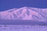 branch;cold;dusk;fence;freeze;freezing;frost;frosty;hoar;ice;last-light;mountain;mountains;slippery;snow;sunset;tree;twilight;winter