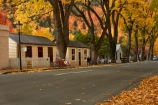 Arrowtown;Arrowtown-cottages;autuminal;autumn;autumn-colour;autumn-colours;autumnal;Buckingham-St;Buckingham-Street;building;buildings;color;colors;colour;colours;cottage;cottages;deciduous;fall;gold;golden;heritage;historic;historic-building;historic-buildings;historic-cottage;historic-cottages;historical;historical-building;historical-buildings;historical-cottage;historical-cottages;history;leaf;leaves;N.Z.;New-Zealand;NZ;old;Otago;Queenstown;S.I.;season;seasonal;seasons;SI;South-Is;South-Is.;South-Island;Southern-Lakes;Southern-Lakes-District;Southern-Lakes-Region;Sth-Is;tradition;traditional;tree;trees;yellow