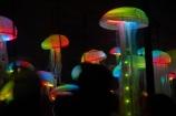 art;art-work;art-works;dark;dusk;evening;event;installation;jelly_fish;jellyfish;jellyfishes;light;light-festival;light-festival-event;light-installation;lighting;lights;LUMA;LUMA-Southern-Light-Project;N.Z.;New-Zealand;night;night-time;night_time;NZ;Otago;public-art;public-art-work;public-art-works;public-sculpture;public-sculptures;Queenstown;S.I.;sculpture;sculptures;sea;Shotover-Primary-School;Shotover-Primary-Schools;SI;SILO;South-Is;South-Island;South-Island-Light-Orchestra;Southern-Light-Project;Statue;statues;Sth-Is;Underworld;winter